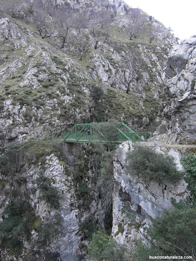 ruta del cares puente