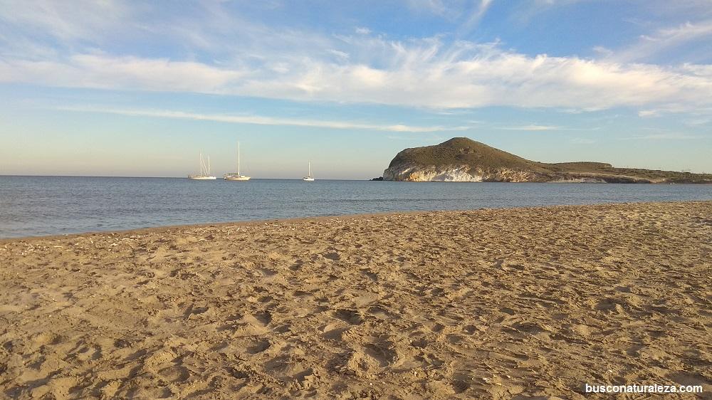 Playa genoveses Cabo de Gata