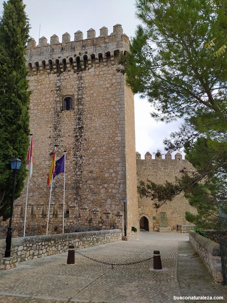 Alarcon castillo