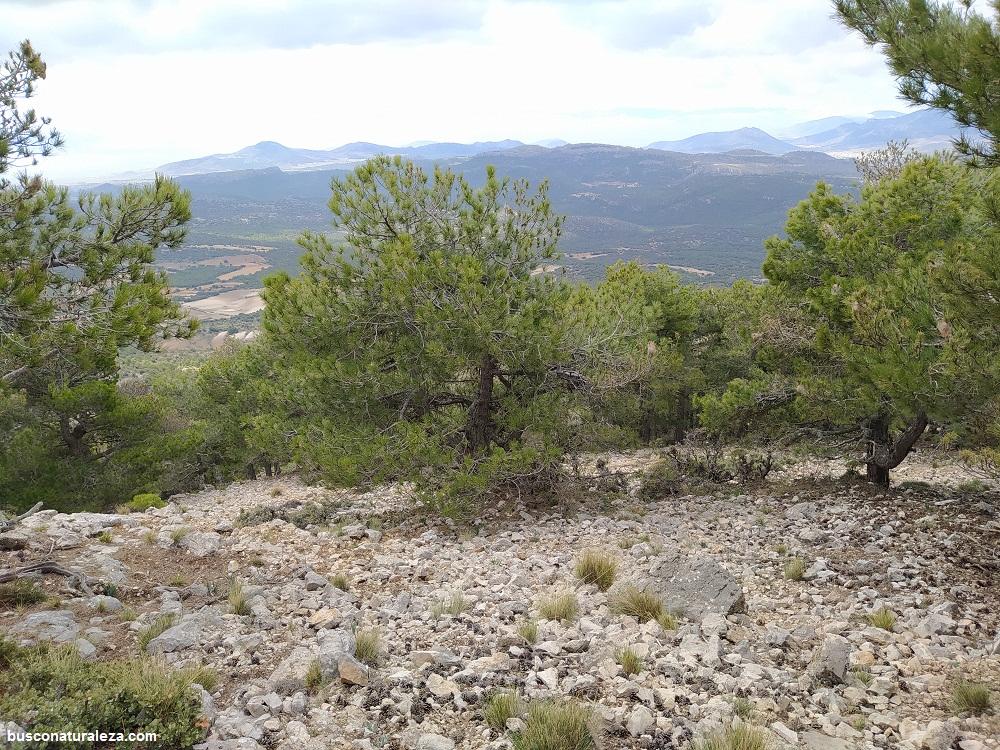 ruta al pico atalaya